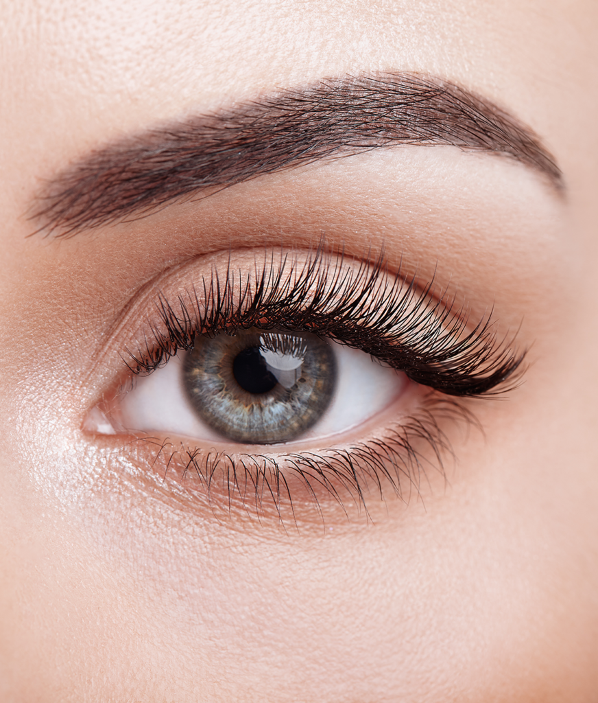 Close-up on a brow and eyelash after microblading